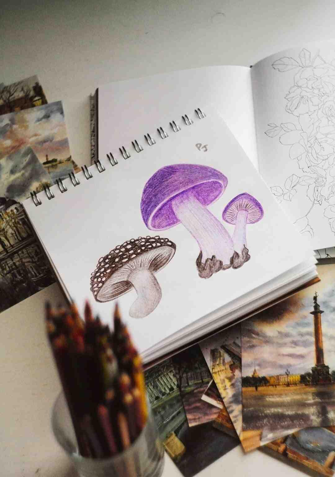 Comment utiliser des crayons aquarellables